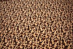 leopardmodell på tygfilten royaltyfria foton