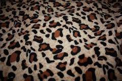 leopardmodell på tygfilten arkivbild