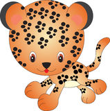 Leopardo Libre Illustration