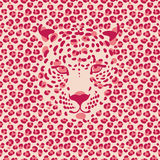 Leopardo 1_1 Fotografia Stock