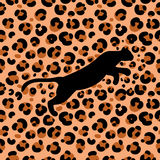 Leopardo 1_1 Immagine Stock