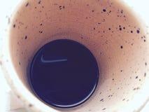 Leopardo bem do café Fotos de Stock