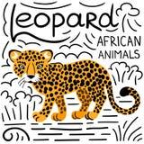Leopardo con iscrizione su un fondo bianco isolato Fotografia Stock Libera da Diritti