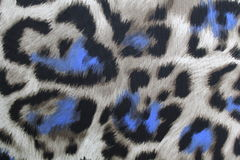 Leopardo de las materias textiles imagen de archivo libre de regalías