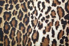 Leopardo de matérias têxteis Imagens de Stock Royalty Free