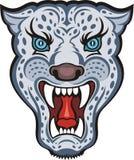 Leopardo de neve (Irbis) Fotos de Stock Royalty Free
