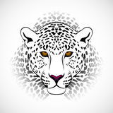 Leopardo del vector Imágenes de archivo libres de regalías