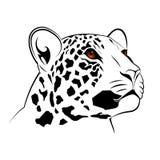 Leopardo di vettore Fotografia Stock