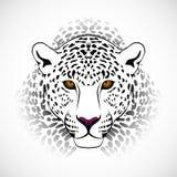 Leopardo di vettore Immagini Stock Libere da Diritti