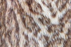 Leopardo o fondo selvaggio della pelliccia Immagini Stock Libere da Diritti