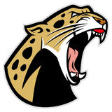 Leopardo rujir Imagens de Stock Royalty Free