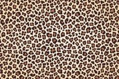 Leopardpälstryck, horisontaltextur med mörka gränser vektor vektor illustrationer