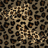 Leopards on seamless Stock Images