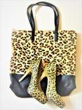Leopardschuhe und -tasche Stockbild