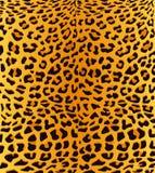 Leopardtryckbakgrund Royaltyfri Foto