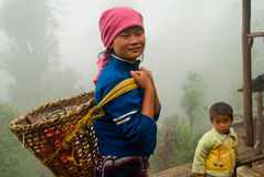 Lepcha tea garden worker Royalty Free Stock Images