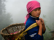 Lepcha tea garden worker Royalty Free Stock Image