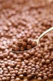 Lepel die met chocoladeballen wordt gevuld royalty-vrije stock foto's