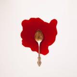 Lepel in een bloedpool Royalty-vrije Stock Afbeelding