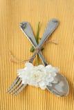 Lepel en vork Royalty-vrije Stock Afbeeldingen