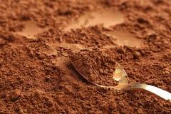 Lepel op cacaopoeder stock foto's