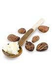 Lepel van sheaboom boterroom en sheaboomnoten stock fotografie