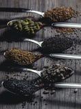 Lepels met assortiment van zaden royalty-vrije stock afbeeldingen
