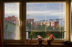 ślepi okno Obraz Royalty Free