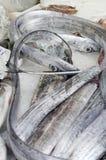 Lepidopus caudatus, pesce bandiera in italian, at fish market. In la speiza stock photography