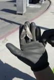 Lepidottero gigante a disposizione con i guanti neri ed il fondo urbano Fotografie Stock