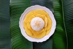 lepki ryż mango Fotografia Stock