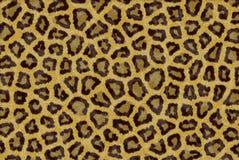 Lepord fur print Stock Image