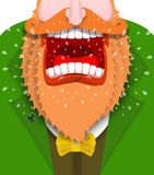 Leprechaun cry Illustration for St. Patricks Day. Scary Gnome re. D beard shouts. Angry dwarf shout. grandfather in green coat. Open your mouth and teeth Royalty Free Stock Photo