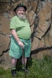 Leprechaun e parete marrone della roccia Immagini Stock Libere da Diritti
