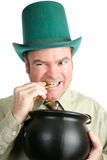 Leprechaun with His St Patricks Day Gold. Irish man dressed as a leprechaun for St. Patrick's Day, biting a coin from his pot of gold.  White background Stock Photos