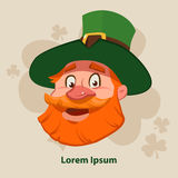 Leprechaun2 Stock Photo