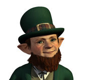 Leprechaun Portrait Royalty Free Stock Photo