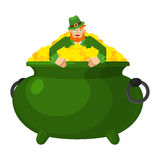 Leprechaun in pot gold. Dwarf with red beard and bowler golded c Royalty Free Stock Photo