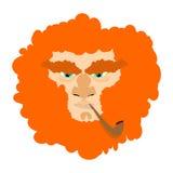 Leprechaun with red beard. St. Patricks Day character. Irish hol Royalty Free Stock Images