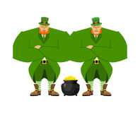Leprechaun security bodyguard. Dwarf with red beard guarding pot. Gold coins. Legendary treasures for lucky. St.Patrick `s Day. Holiday in Ireland Royalty Free Stock Images