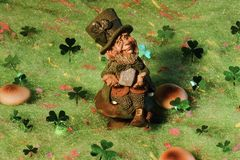 Leprechaun Sitting on Toadstool. Irish or St. Patrick`s Day theme leprechaun surrounded by toadstools and shamrocks. Suitable for holiday greetings, invitations royalty free stock photography