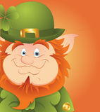 Leprechaun Smile Stock Images