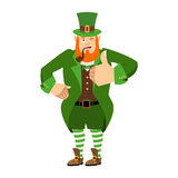 Leprechaun winks. Dwarf with red beard thumbs up. Happy St.Patri. Ck `s Day. Irish elf emotions. Holiday in Ireland Stock Photography