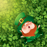 Leprechuan lying on clover leaves background Royalty Free Stock Photos