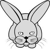 Lepri o coniglio Fotografia Stock