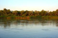 Lepsi brzeg rzeki w ranku Obrazy Stock