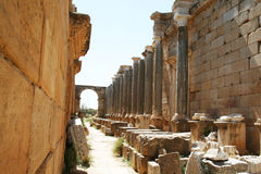 Leptis magna. The ruins of the ancient roman basilica of leptis magna in libya royalty free stock images