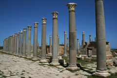Leptis magna. A roman ancient colonnade in leptis magna in libya royalty free stock image