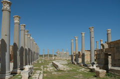 Leptis Magna. Ruins of the Roman city Leptis Magna, Libya royalty free stock image