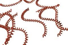 Leptospira απεικόνιση βακτηριδίων Στοκ φωτογραφία με δικαίωμα ελεύθερης χρήσης